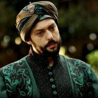 Ибрагим паша - фото 6